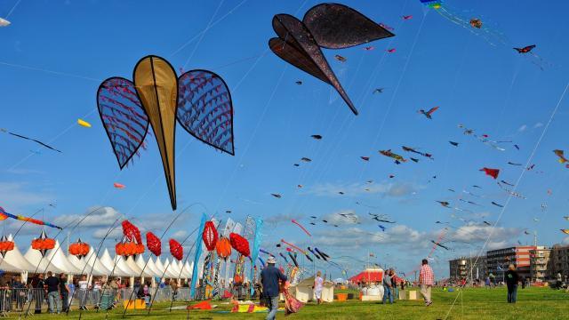 Festival Cerfs Volants Dieppe Yann Pelcat 35
